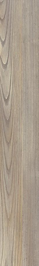Transform Dryback Mexican Ash 20245