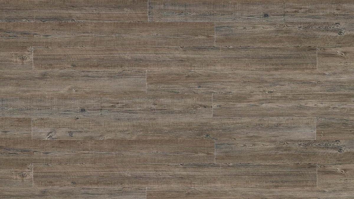 Transform Click Latin Pine 24868