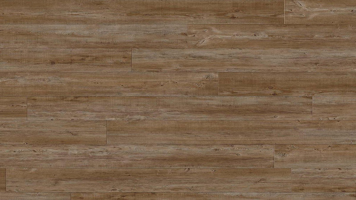 Transform Click Latin Pine 24852